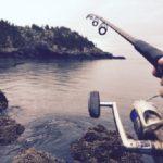 ウツボを釣りあげる時期やポイント